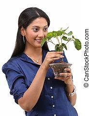 小さい, 植物, 女, 保有物
