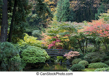 Wooden bridge, Japanese Garden, Portland, Oregon - Autumn in...