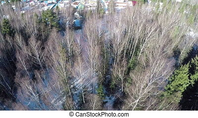 Aerial winter view of houses in village near the forest -...