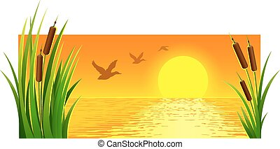 Landscape of sunset at lake with reeds and bright sun on the...