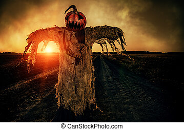 scarecrow in a field - Halloween legend. Portrait of...