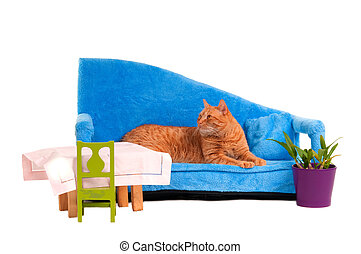 Cat on a sofa - Cat lying on blue sofa is expecting guests...