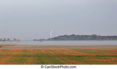 Foggy bean field with wind turbine and trees at dawn in...
