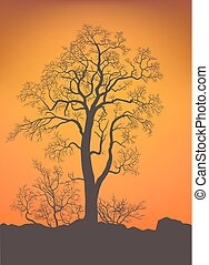 Bare tree and bushes. - Bare trees, bushes on background in...