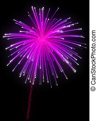 Festive purple fireworks at night