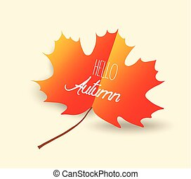 happy autumn design with orange maple leaf on background