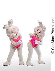 two bunny girl mascot costume