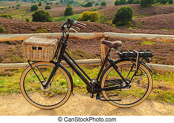 Electric black cargo bicycle with basket in Dutch national...