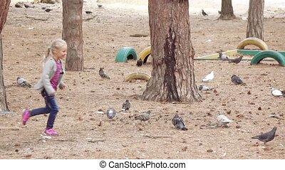 Girl child chasing pigeons - Girl child runs through the...