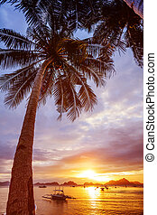 Beautiful sunset over the sea with a view at palms on the...