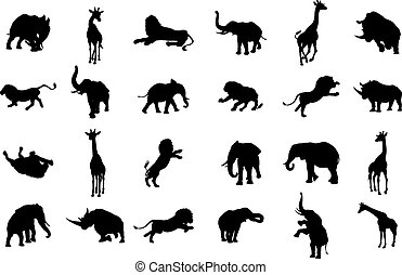 African Safari Silhouette Animal - An African animal safari...