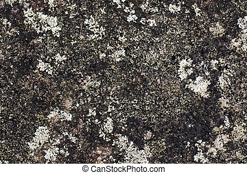 Image of natural stone texture background. Rock floor