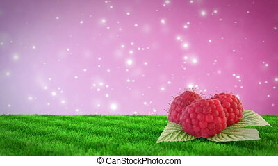 raspberries on grass field with loopable bokeh background....