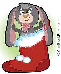 Bunny in the Santa's shoe