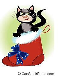 Cat in the Santa's shoe