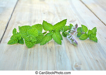 Various kinds of min - Various kinds of fresh mint on wooden...