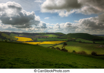 Rolling Hills and Fields in Somerset - View of Rural...