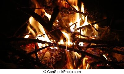 Campfire flames slow motion - Burning fire in a camp, slow...