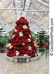 Poinsettia Tree - A red and white tree composed entirely of...