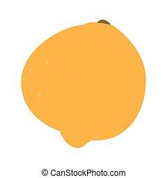 Isolated orange fruit on a white background, Vector...