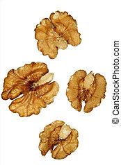 Walnuts - Four walnut halves on white