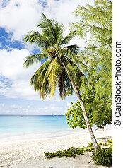 Enterprise Beach, Barbados, Caribbean