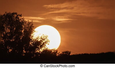 Sunset over mountain and tree timelapse - Fast huge sun...