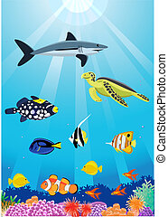 sea life - vector illustration of beautiful sealife