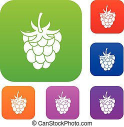 Raspberry or blackberry set color collection - Raspberry or...