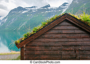 Traditional scandinavian old wooden houses with grass roofs...