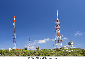 Antennas - High mountain communication center and cows...