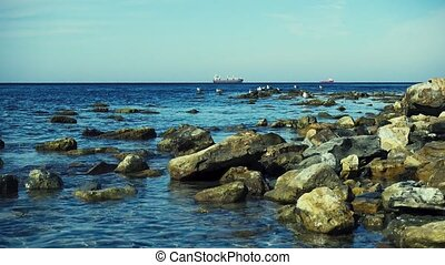 Gulls on the rocks on the horizon ships in the roadstead -...