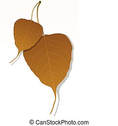 maple leaf - illustration of close up of peepal leaf