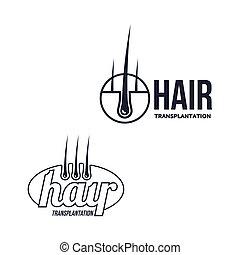 vector hair follicle in hair bulb icon - Hair follicle in...