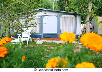 camping camp tent yellow flowers outdoor park - camping camp...