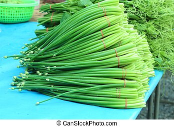 Spring onion flower at market