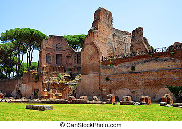 Palatine Hill, Rome in Italy. - Ancient roman ruins at the...