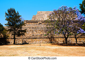Monte Alban Ruins in Oaxaca, Mexico with trees - Oaxaca,...
