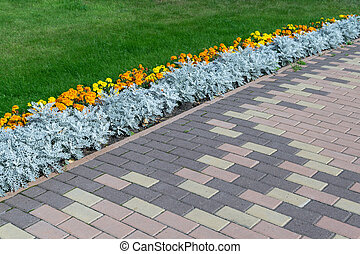 Paving pattern with rectangular shape and brown color. Along...