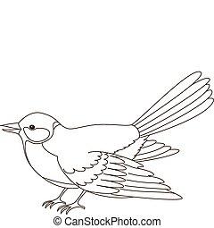 Titmouse, contours - Bird a titmouse, a vector, the isolated...