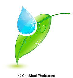leaf with water drop - illustration of leaf with water drop...