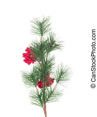 Artificial red berry and pine branch. Isolated on a white...