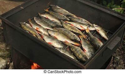 smokehouse smoked perch on the grill - traditional Cooking...