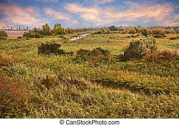Po Delta Park landscape in the wetland of Porto Tolle,...