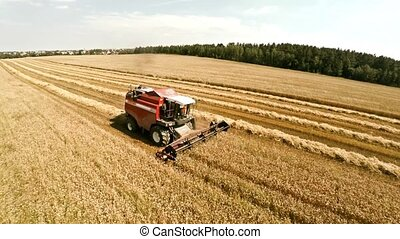 Harvester harvests crops and pours grain into a truck. The...