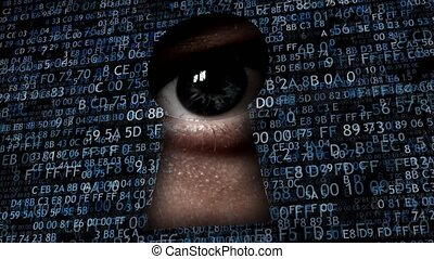 Hacking data. Spying on the Internet, collecting information...