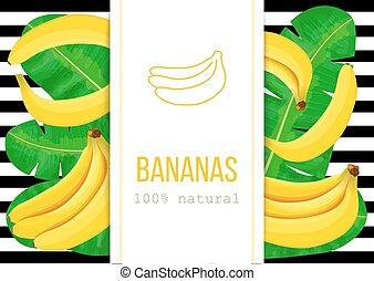 Ripe Bananas, tropical palm leaves with text 100 percent...