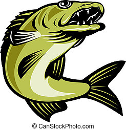 walleye fish jumping isolated - retro illustration of a...