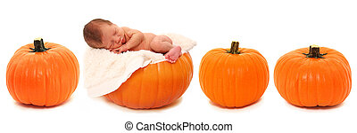 Newborn on Pumpkin - Adorable newborn baby laying on pumpkin...