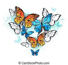 morpho and monarchs - Realistic butterflies, blue morpho and...